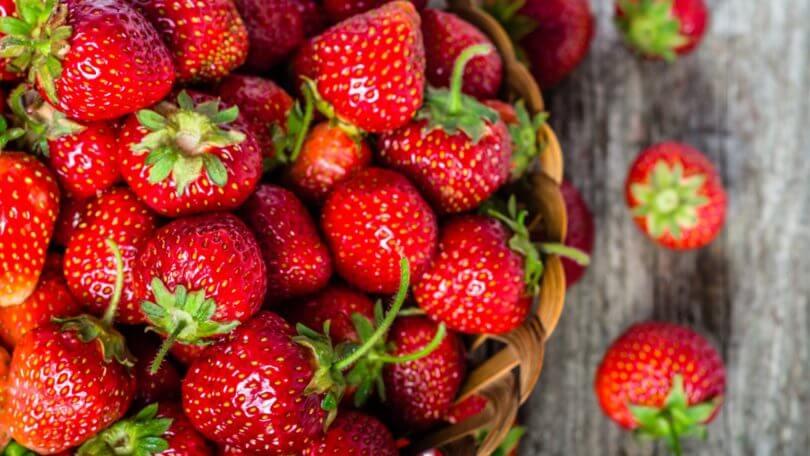 Régalez votre bébé avec des fraises dès ses 4/6 mois !