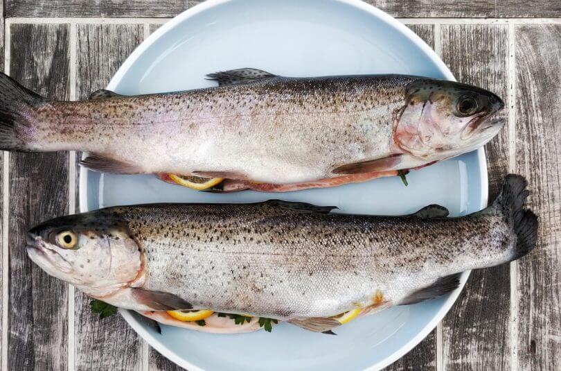 Le poisson, mais si, c'est bon dès les 6 mois révolus de bébé !