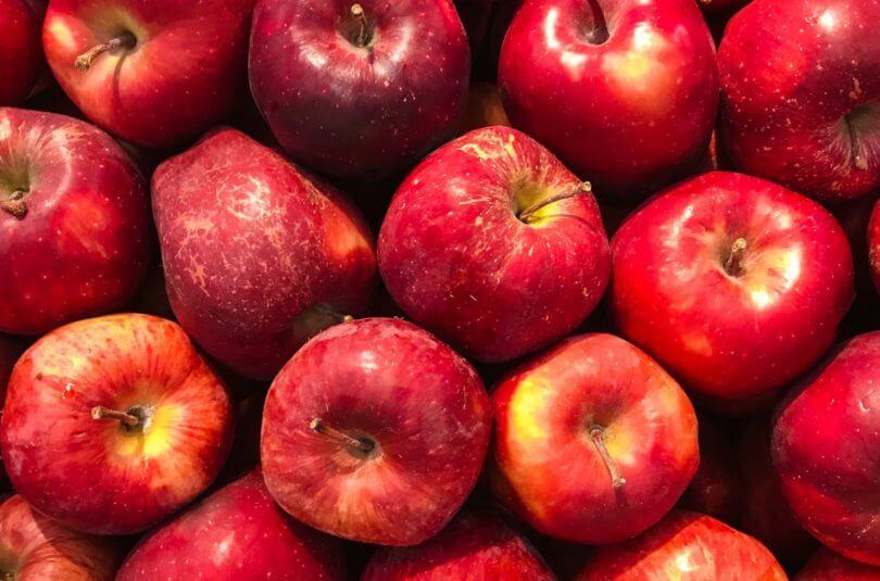 Les pommes, en voilà pour tout l'automne !