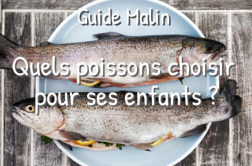 Guide : Quels poissons choisir pour ses enfants, lors de la grossesse et de l'allaitement ?